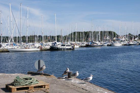 Gilleleje lystbåde havn