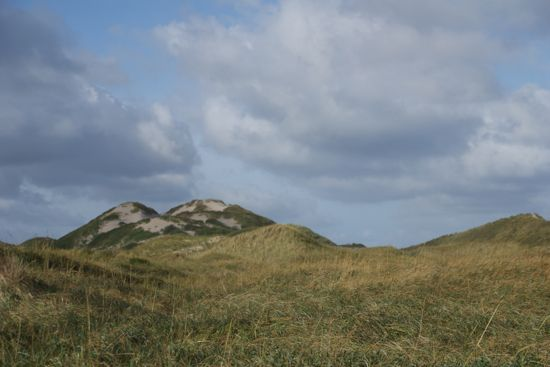 Området ude ved Gl. Skagen